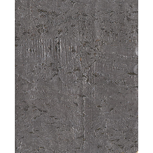 Ronald Redding Industrial Interiors II Metallic Gray Cork Wallpaper
