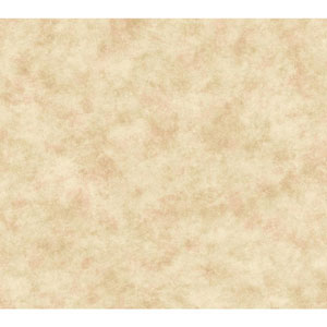 Handpainted III Beige and Pale Pink Painterly Texture Wallpaper