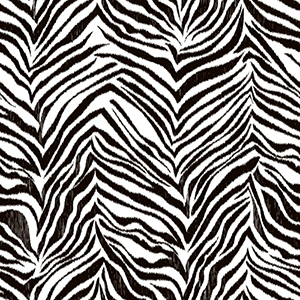Cool Kids Snow and Licorice Ikat Zebra Wallpaper