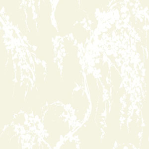 Young At Heart Willow Tree Green and White/Off White Wallpaper