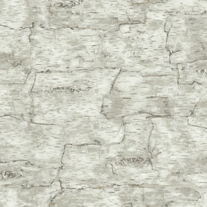 Lake Forest Birch Bark Wallpaper