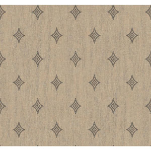 Menswear Voltage Black and Beige Removable Wallpaper