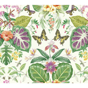 Outdoors In Tropical Butterflies Orange and Hotpink Wallpaper