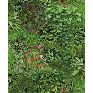 Outdoors In Living Wall Green Wallpaper