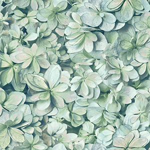 Hydrangea Green and Blue Peel and Stick Wallpaper