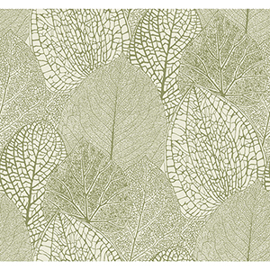 Masterworks Green and Cream Botanical Wallpaper