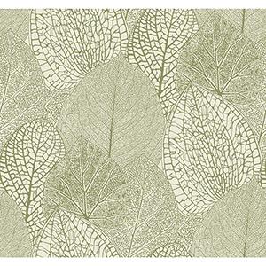 Masterworks Green and Cream Botanical Wallpaper
