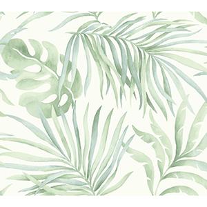 Candice Olson Tranquil Light Green Palm Wallpaper