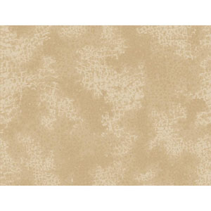 Sculptured Surfaces II Gold and Tan Allie Wallpaper