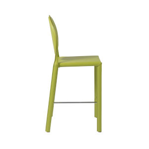 Isabella Green 19-Inch Counter Stool, Set of 2