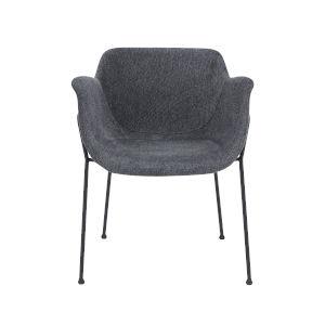 Daphne Dark Gray 24-Inch Arm Chair, Set of 2