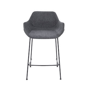 Daphne Dark Gray 22-Inch Bar Stool, Set of 2