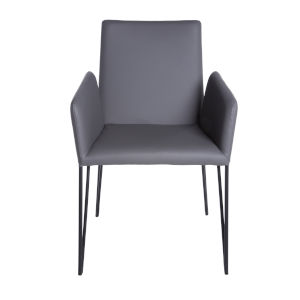 Amir Gray 22-Inch Arm Chair