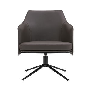Signa Gray 26-Inch Lounge Chair