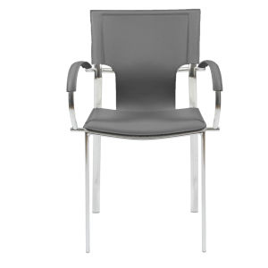 Vinnie Gray 20-Inch Arm Chair, Set of 2