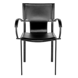 Vinnie Black 20-Inch Arm Chair, Set of 2