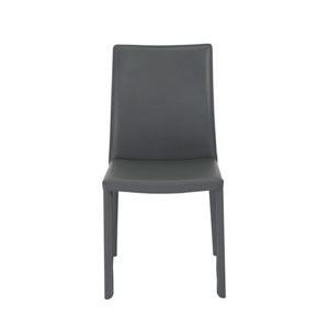 Hasina Gray Side Chair, Set of 2