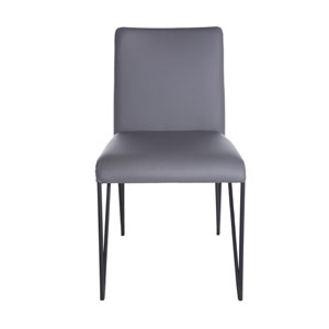 Amir Side Chair in Dark Gray and Black - Set of 2