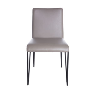 Amir Side Chair in Taupe and Black - Set of 2