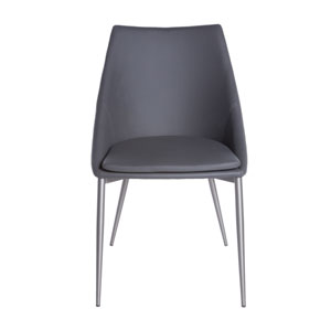 Constance Side Chair in Dark Gray and Brushed Stainless Steel - Set of 2