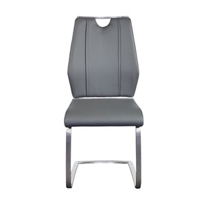 Lexington Side Chair in Gray and Brushed Stainless Steel - Set of 2