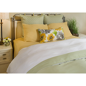 White and Sage Rayon from Bamboo Reversible Twin Duvet Cover