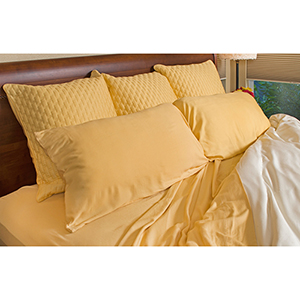Butter Rayon from Bamboo Full/Standard Pillowcase Set