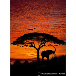 African Sunset Wall Mural