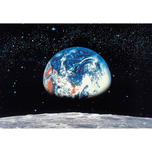Multicolor Earth and Moon Wall Mural