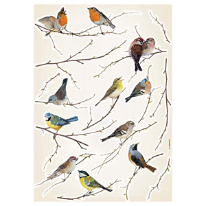 Multicolor Birds Wall Stickers