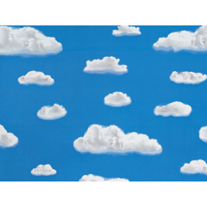 Clouds Window Film, Set of Two