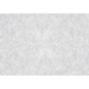 Rice Paper Window Film, Set of Two