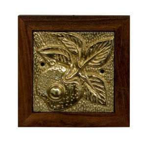 Apple Polished Brass Doorbell Button Cover
