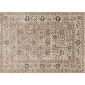 Century Taupe Rectangular: 2 Ft 7 In x 4 Ft Rug