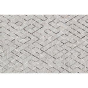 Dorado Grey Rectangular: 5 Ft x 7 Ft 6 In Rug