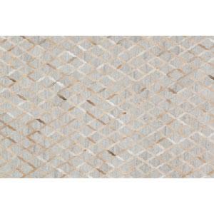 Dorado Grey and Sand Rectangular: 5 Ft x 7 Ft 6 In Rug