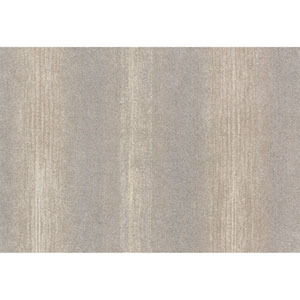Emory Silver Rectangular: 3 Ft 10 In x 5 Ft 7 In Rug