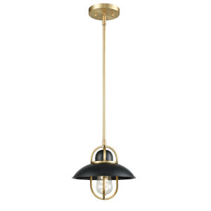 Peggys Cove Graphite and Satin Nickel One-Light Mini Pendant