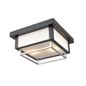 Ionic Black and Stainless Steel Two-Light Outdoor Flushmount