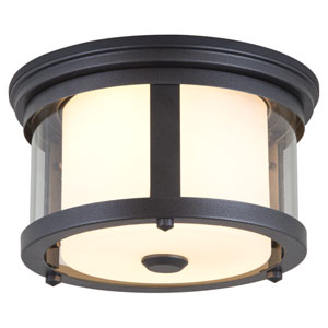 Niagara Outdoor Hammered Black Two-Light Flush Mount