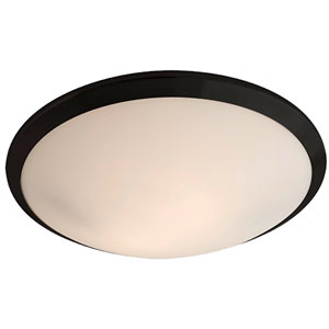 Essex Graphite Two-Light Flush Mount