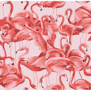 Flamingo Cheeky Pink Removable Wallpaper