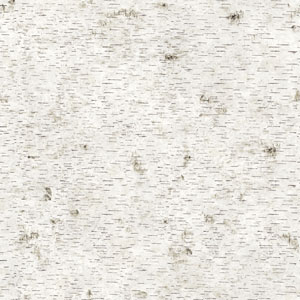 Genevieve Gorder Birchy Barky No Filter Natural Removable Wallpaper