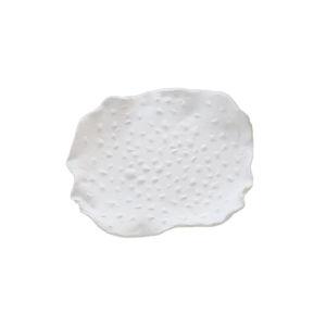 Studio A Home Soft White Dotted Maitake Wall Decor