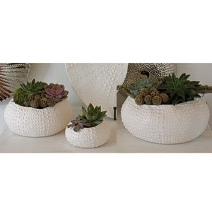 Ceramic Matte White Medium Urchin Bowl