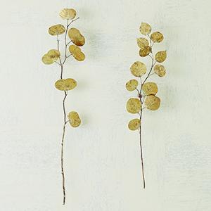 Studio A Large Antique Brass Eucalyptus