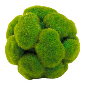 Green Small Moss Sphere