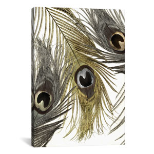 Feather Fashion I by Color Bakery: 26 x 40-Inch Canvas Print