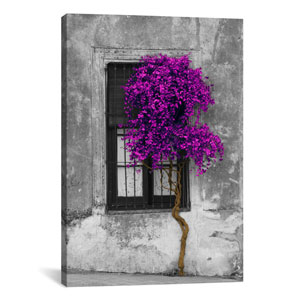 Tree in Front of Window Purple Pop Color Pop by Panoramic Images: 18 x 26-Inch Canvas Print
