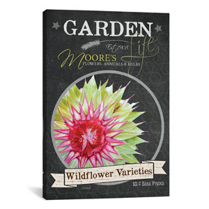 Chalkboard Series, Wildflower Varieties by Jennifer Redstreake: 18 x 26-Inch Canvas Print